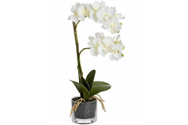 Hill Interiors Harmony Potted Artificial Orchid Plant (White) (One Size)